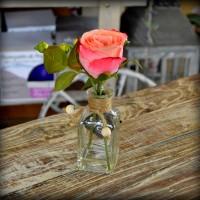 Rosa con jarrón